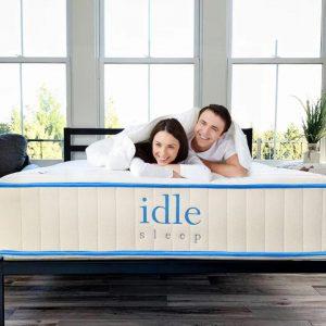 idle-hybrid-1-1.jpg
